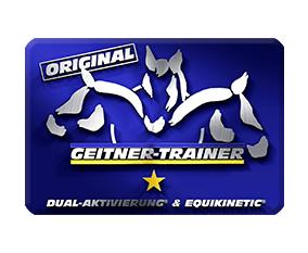 Dualaktivierung-Trainer Schweiz